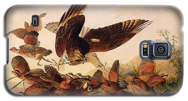 Red Shouldered Hawk Attacking Bobwhite Partridge Galaxy S5 Case by John James Audubon