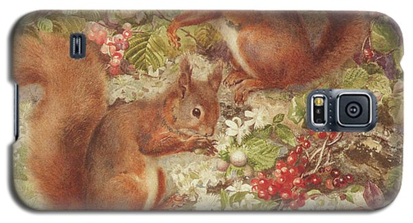Red Squirrels Gathering Fruits And Nuts Galaxy S5 Case by Rosa Jameson