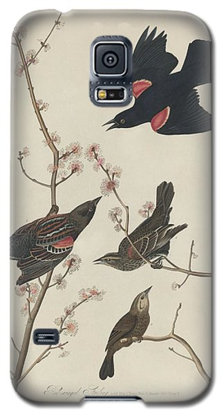 Red-winged Starling Galaxy S5 Case by John James Audubon