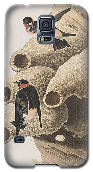 Republican Or Cliff Swallow Galaxy S5 Case by John James Audubon