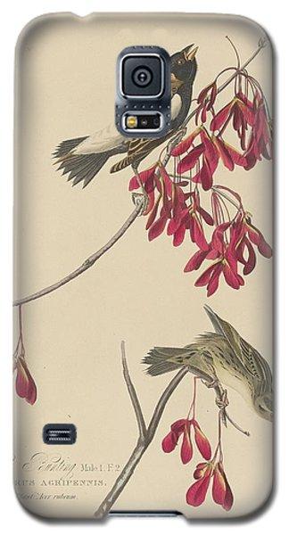 Rice Bunting Galaxy S5 Case by John James Audubon