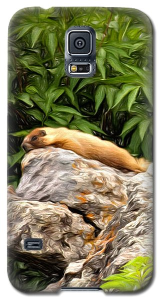 Rock Chuck Galaxy S5 Case by Lana Trussell