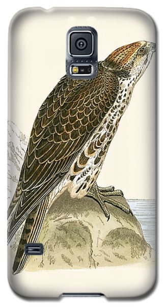 Saker Falcon Galaxy S5 Case by English School