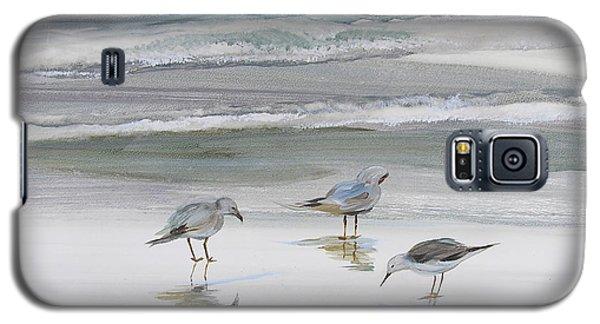 Sandpipers Galaxy S5 Case by Julianne Felton