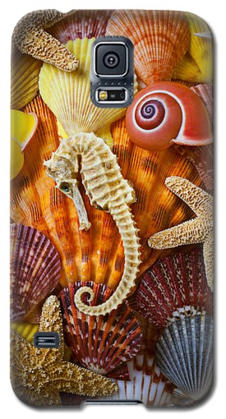 Seahorse And Assorted Sea Shells Galaxy S5 Case by Garry Gay