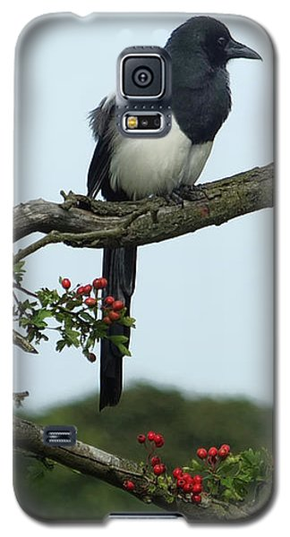 September Magpie Galaxy S5 Case by Philip Openshaw