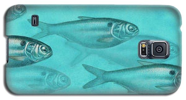 Shiner Run Galaxy S5 Case by JQ Licensing