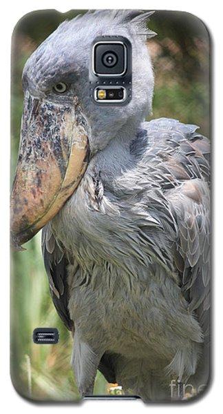 Shoebill Stork Galaxy S5 Case by Carol Groenen