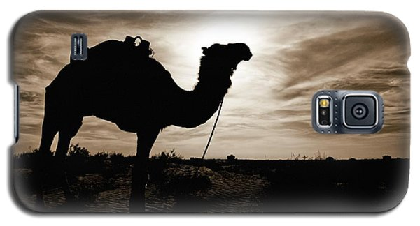 Silhouetted Camel, Sahara Desert, Douz Galaxy S5 Case by David DuChemin