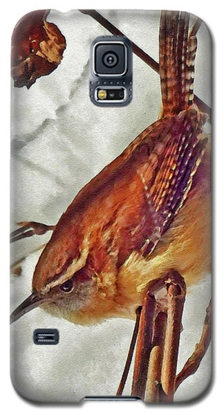 Slim Pickens, Carolina Wren Galaxy S5 Case by Ken Everett