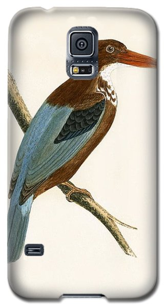 Smyrna Kingfisher Galaxy S5 Case by English School