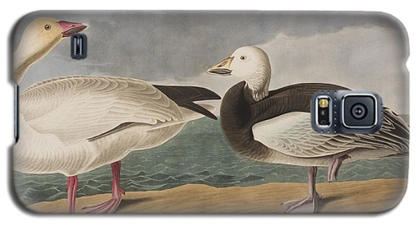 Snow Goose Galaxy S5 Case by John James Audubon