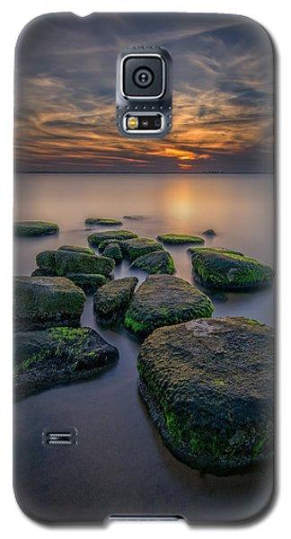 Buy Galaxy S5 Cases - South Bay Serenity Galaxy S5 Case by Rick Berk