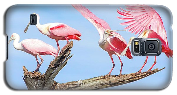Spoonbill Party Galaxy S5 Case by Mark Andrew Thomas