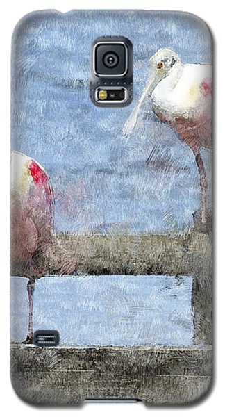 Spoonbills Hanging Out Galaxy S5 Case by Betty LaRue