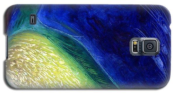 Starlight Galaxy S5 Case by Nancy Moniz