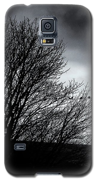 Starlings Roost Galaxy S5 Case by Philip Openshaw