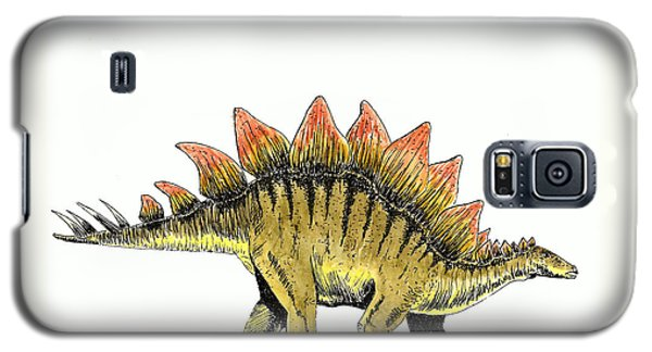 Stegosaurus Galaxy S5 Case by Michael Vigliotti