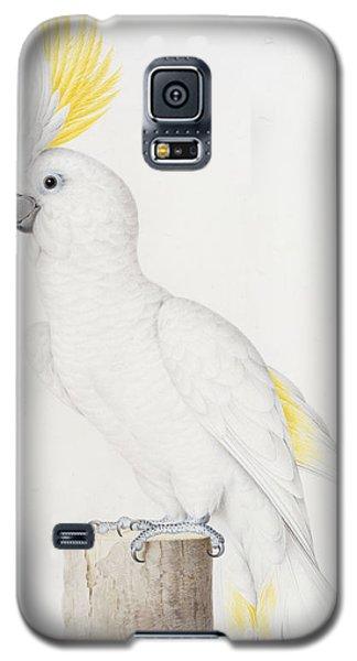 Sulphur Crested Cockatoo Galaxy S5 Case by Nicolas Robert