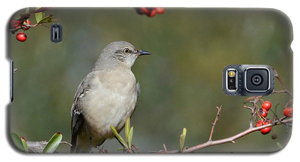 Surrounded By Berries 2 Galaxy S5 Case by Fraida Gutovich