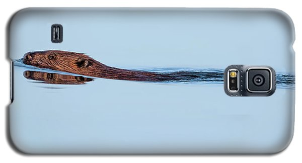 Swimming With The Beaver Galaxy S5 Case by Bill Wakeley
