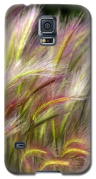 Plant Galaxy S5 Cases - Tall Grass Galaxy S5 Case by Marty Koch