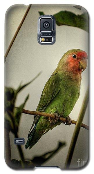 The Lovebird  Galaxy S5 Case by Saija  Lehtonen