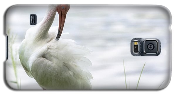 The White Ibis  Galaxy S5 Case by Saija  Lehtonen