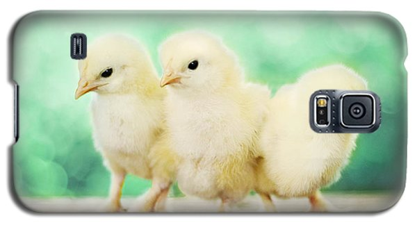 Three Amigos Galaxy S5 Case by Amy Tyler