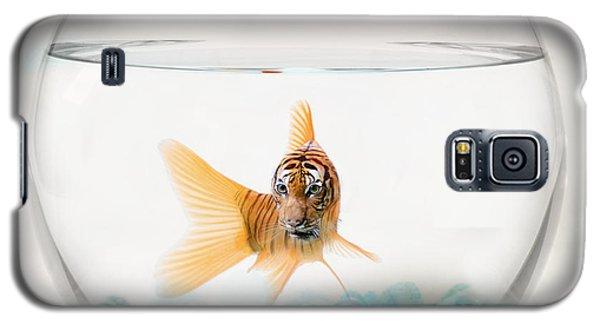 Tiger Fish Galaxy S5 Case by Juli Scalzi