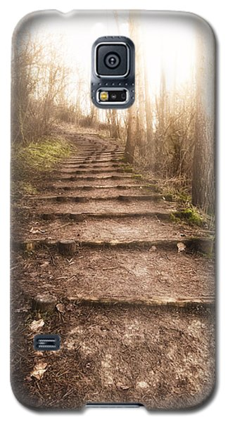 Buy Galaxy S5 Cases - To The Light Galaxy S5 Case by Wim Lanclus