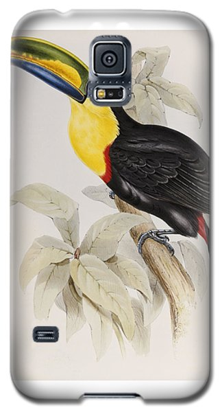 Toucan Galaxy S5 Case by John Gould