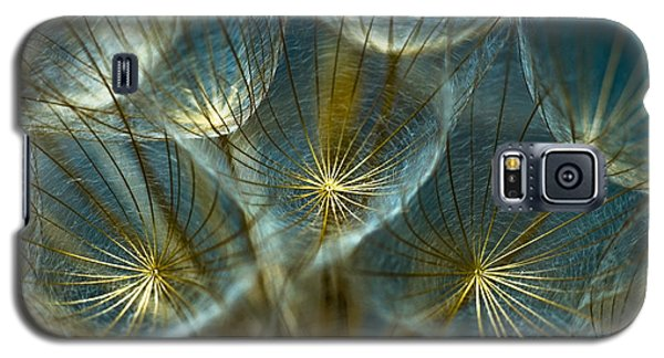 Blue Galaxy S5 Cases - Translucid Dandelions Galaxy S5 Case by Iris Greenwell