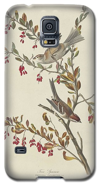 Tree Sparrow Galaxy S5 Case by John James Audubon