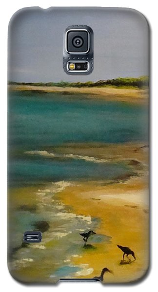 Animals Galaxy S5 Cases - Tuesday morning at Horn Island Galaxy S5 Case by Leslie Dobbins