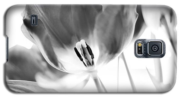 Flower Galaxy S5 Cases - Tulips Galaxy S5 Case by Silke Magino