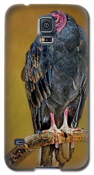 Turkey Vulture Galaxy S5 Case by Nikolyn McDonald