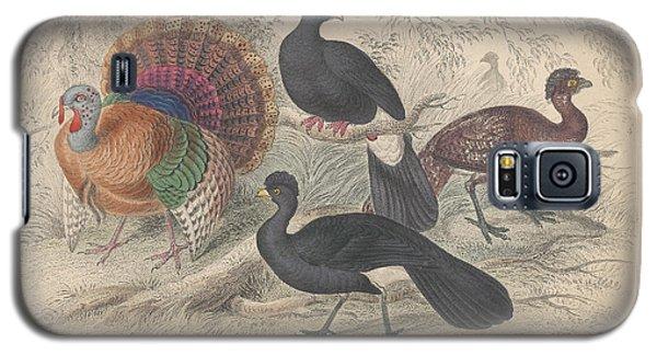 Turkeys Galaxy S5 Case by Oliver Goldsmith