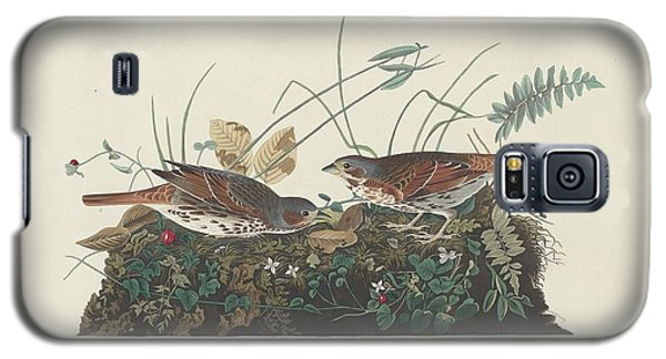Two-colored Sparrow Galaxy S5 Case by John James Audubon