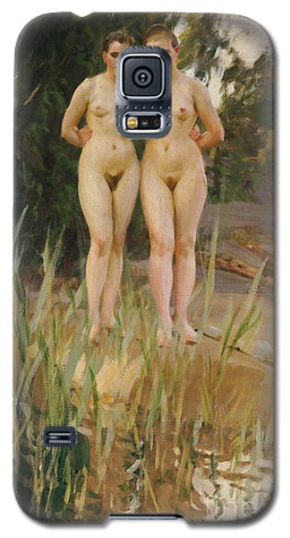 Two Friends  Galaxy S5 Case by Anders Leonard Zorn