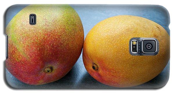 Two Mangos Galaxy S5 Case by Elena Elisseeva