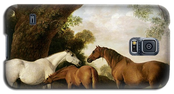Two Mares And A Foal Galaxy S5 Case by George Stubbs