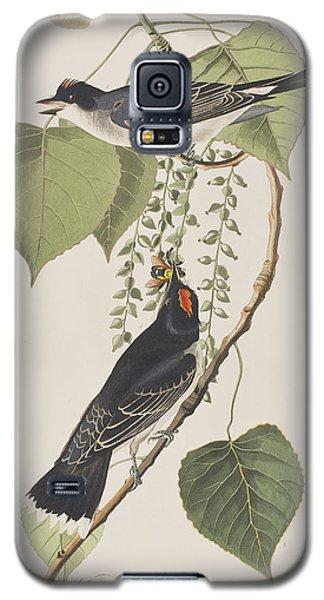 Tyrant Fly Catcher Galaxy S5 Case by John James Audubon