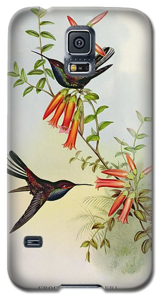 Urochroa Bougieri Galaxy S5 Case by John Gould