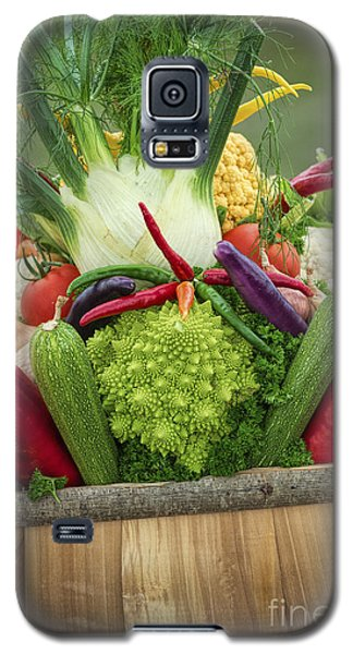 Veg Trug Galaxy S5 Case by Tim Gainey