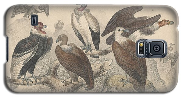 Vultures Galaxy S5 Case by Oliver Goldsmith