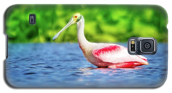 Wading Spoonbill Galaxy S5 Case by Mark Andrew Thomas