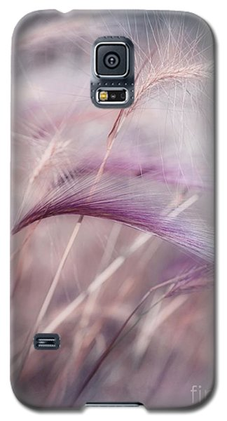Plant Galaxy S5 Cases - Whispers In The Wind Galaxy S5 Case by Priska Wettstein
