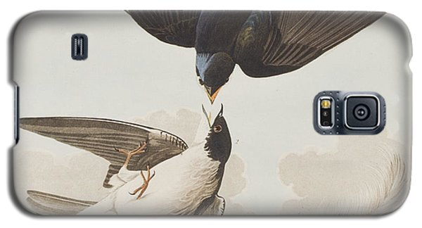 White-bellied Swallow Galaxy S5 Case by John James Audubon