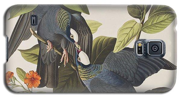 White Crowned Pigeon Galaxy S5 Case by John James Audubon